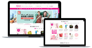 Chinese website; ecommerce; digital marketing
